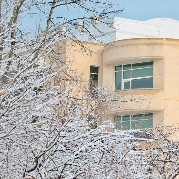 building and snow on trees