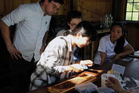 Scholars learn to differentiate honey from royal jelly with the help of Claire Saint-Amour (YC '21)