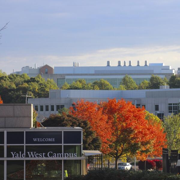 yale west campus building and trees